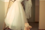 Saneesh Sukumaran | Bride with Dog