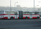 Prague Buses | Waiting for Passengers