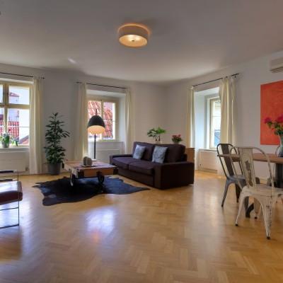 One-Bedroom Sunlit Apartment