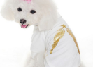 Susanne Fashion | Trendy T-Shirts for Pets
