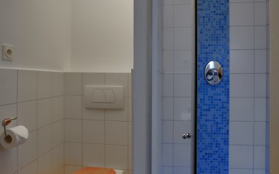 Blue and White Tile Bathroom