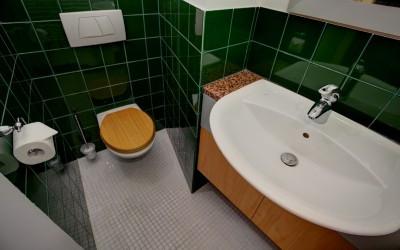 Extra Toilet, Green Tile