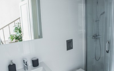 Second Bathroom (w/ Shower & Toilet)