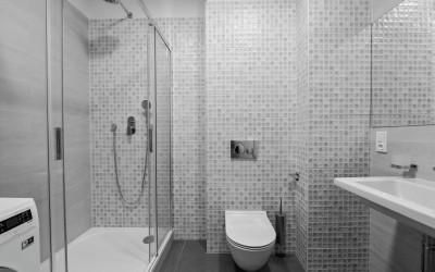 Bathroom (w/ Shower, Toilet, Sink}