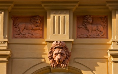 Lion Head Detail